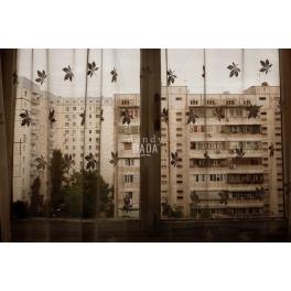 Tashkent rayon