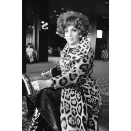 Gina Lollobrigida II