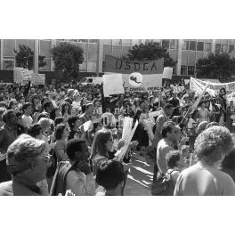 Grenada Protest V