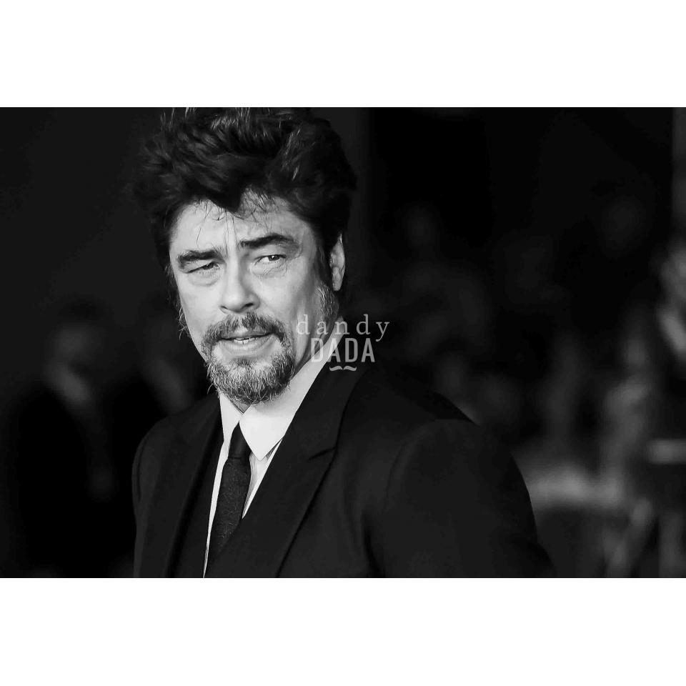 Del Toro